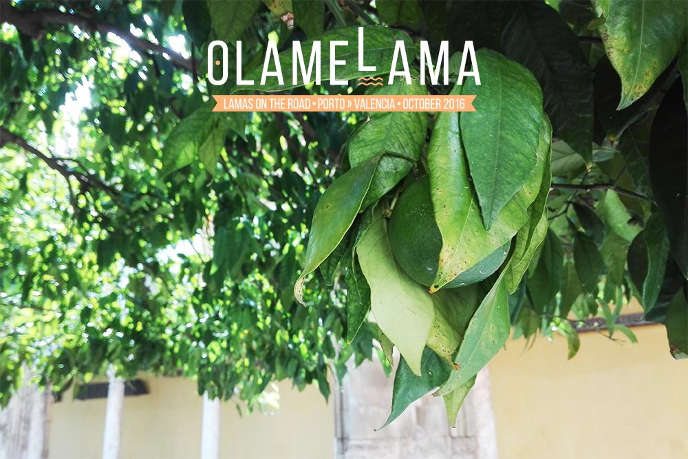 Malaga - Roadtrip - Olamelama blog
