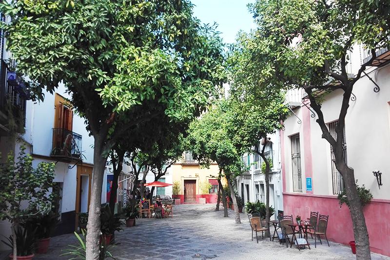 Roadtrip - Sevilla - Lamas on the road - Olamelama blog
