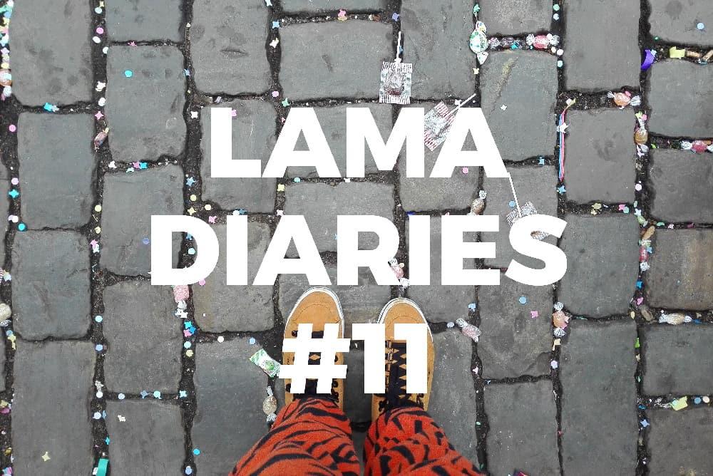 Lama Diaries - Février 2017 - Olamelama