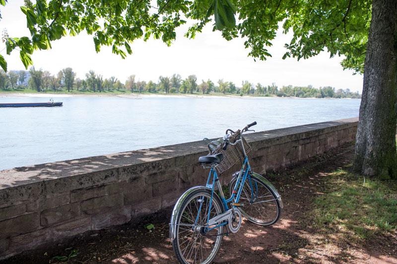 Sur la route de Kaiserswerth, le long du Rhein avec mon vélo - Olamelama