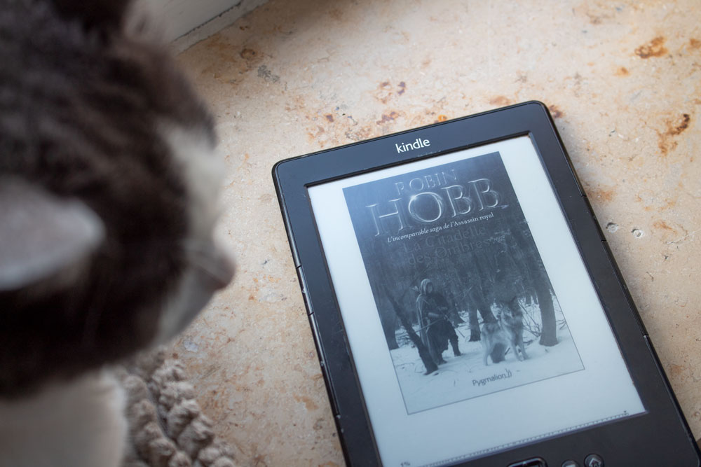 Lama Diaries #25 #26 Avril et Mai 2018 - Robin Hobb, la Saga de l'Assassin Royal