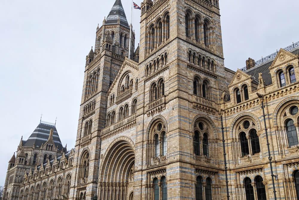 Voyage solo à Londres - Natural History Museum