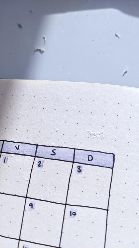 Bullet Journal - Mon avis sur les carnets Dingbats Wildlife - Test masking tape