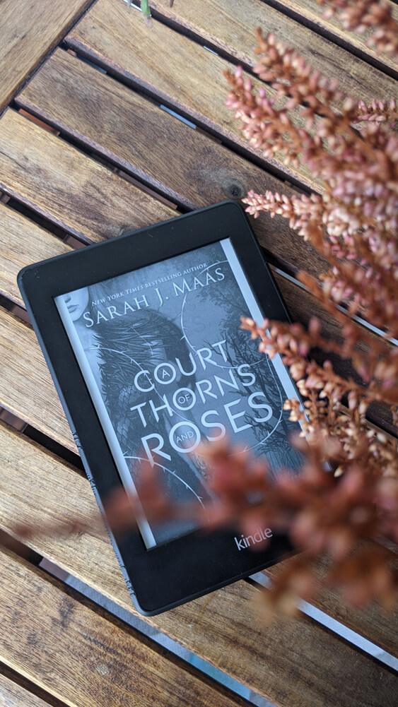 Lectures préférées de 2020 - A court of thorns and roses de Sarah J. Maas (ACOTAR)